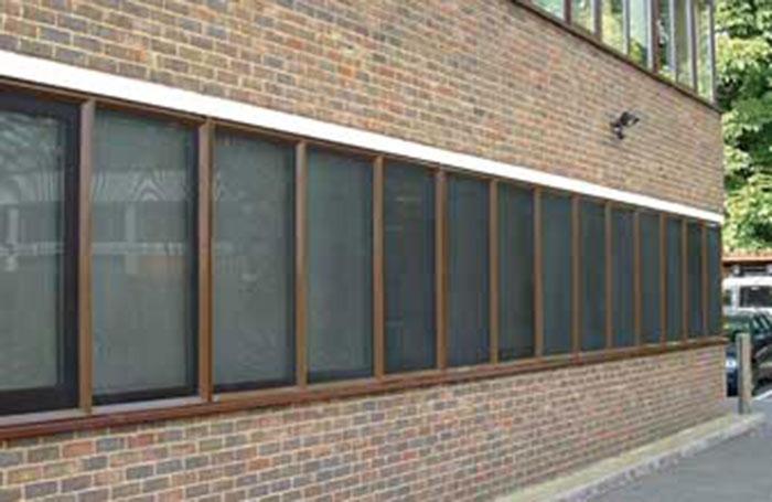 Window mesh grille
