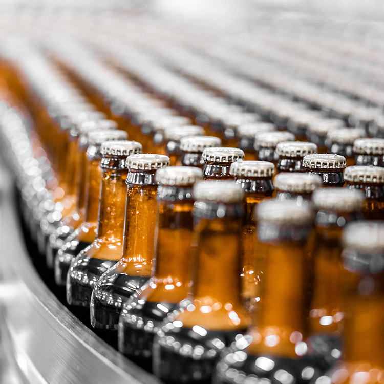 Photo of beer bottles in a factory machine